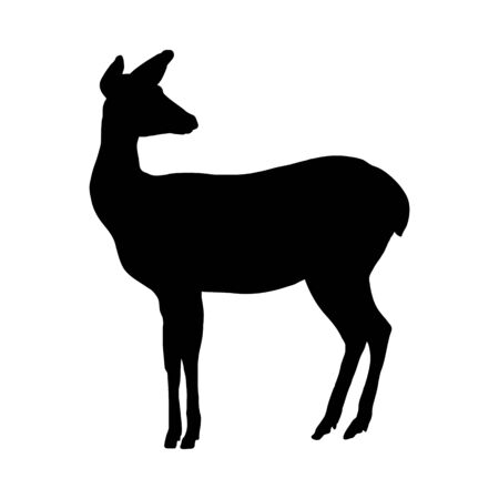 Deer Silhouette. Highly Detailed Smooth Design. Vector Illustration. Ilustração
