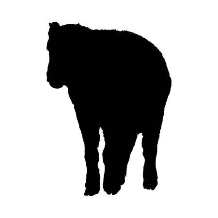 Bison Silhouette. Highly Detailed Smooth Design. Vector Illustration.