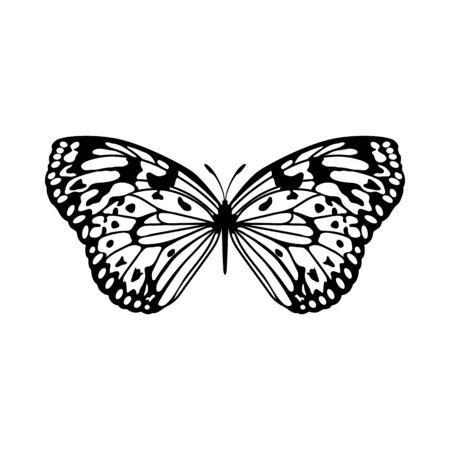 Schizzo di farfalla. Progettazione di contorno. Illustrazione di vettore. Vettoriali