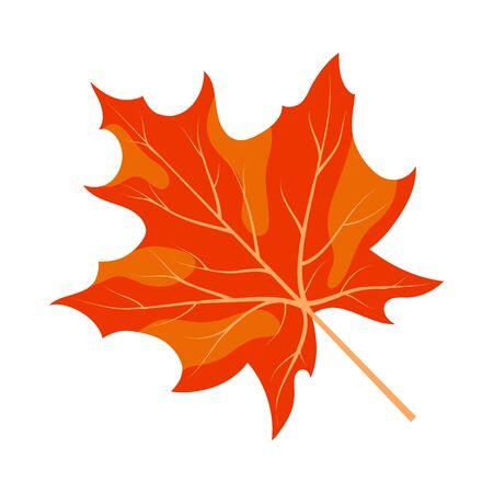 Foglia d'acero d'autunno. Collezione Autunno. Illustrazione vettoriale.