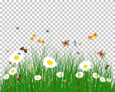 Summer (Spring) Medow. Transparency Grid Background Design. Vector Illustration. 일러스트