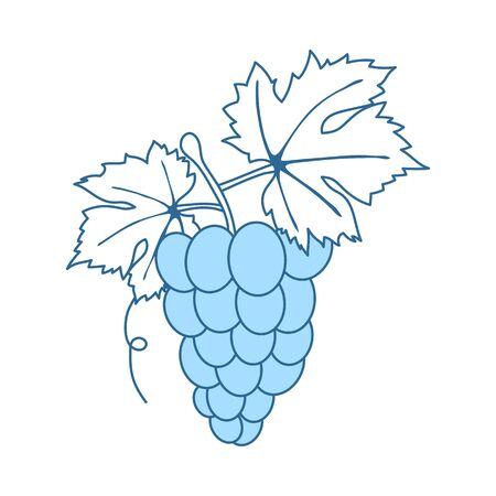 Icon Of Grape. Thin Line With Blue Fill Design. Vector Illustration.