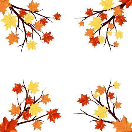 Autumn  Frame With Maple Leaves on Branches of Tree  Over White Background. Elegant Design with Text Space and Ideal Balanced Colors.