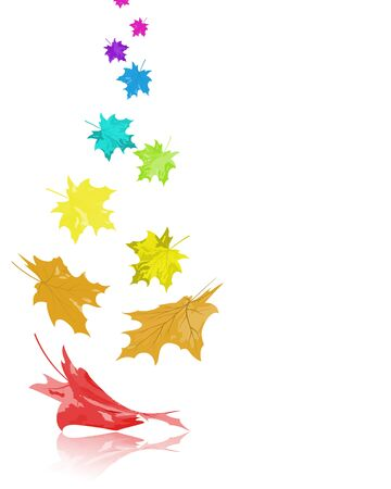 Autumn  frame with falling  maple leaves in rainbow colors on white background. Elegant design with text space and ideal balanced colors. Vector illustration.