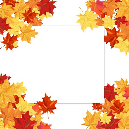 Autumn  Frame With Blank Sheet of Paper and Maple Leaves Over and Under It.  Over White Background. Elegant Design with Text Space and Ideal Balanced Colors. Vector Illustration.