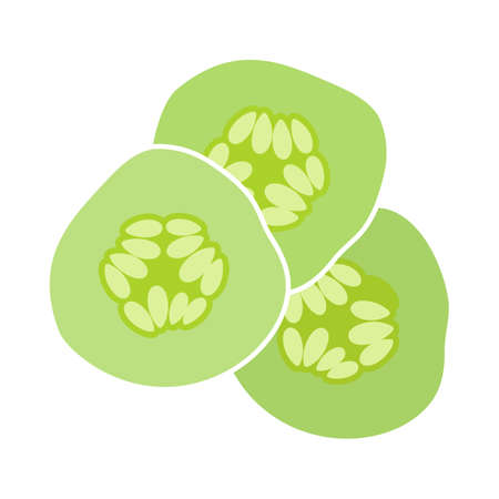 Cucumber Slices For SPA Icon. Flat Color Design. Vector Illustration.