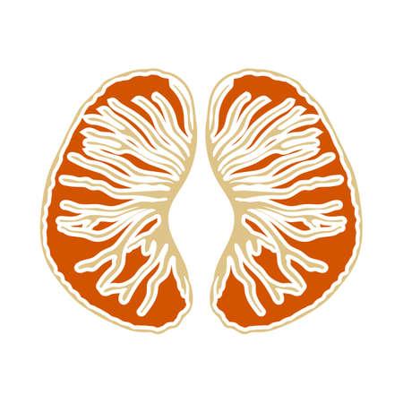 Icon Of Mandarin In Ui Colors. Flat Color Design. Vector Illustration.