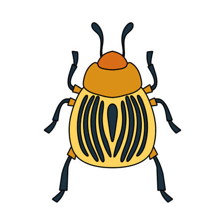 Colorado Beetle Icon. Editable Outline With Color Fill Design. Vector Illustration.