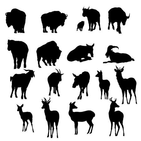 18 deer, yak and goats silhouettes. Smooth and Clean Lines. High detailed deer, yak and goats silhouettes. Vector Illustration.