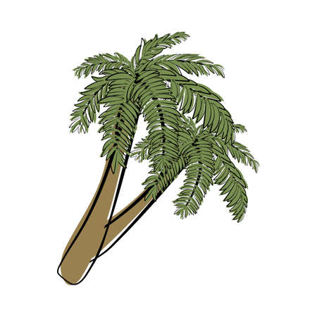 Doodle sketch palm tree with color fill. Simple design suitable for making greeting cards. Vector illustration. Illusztráció