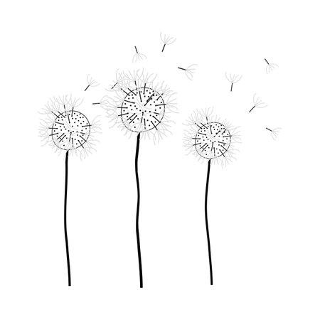 Doodle sketch dandelion with color fill. Simple design suitable for making greeting cards. Vector illustration. Illusztráció