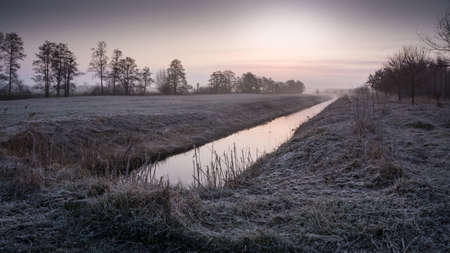 nearness: Nature conservation area in the morning with fog