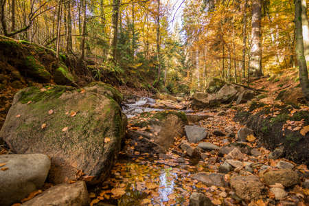 Mountain stream with waterfall in an autumn forest