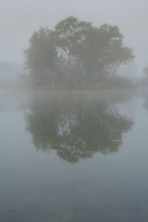 a small island in a lake with trees in thick fog Imagens