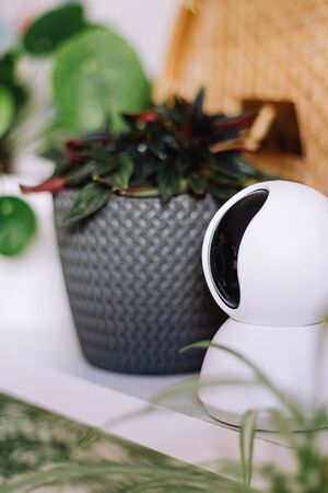 Indoor plants with a modern security camera to protect the house