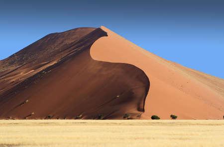 Serpentine Dune Stock Photo - 696444