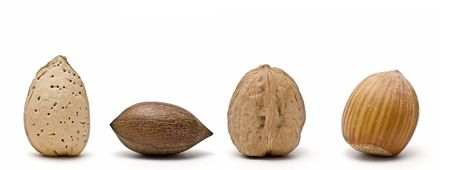 Nuts on line. photo