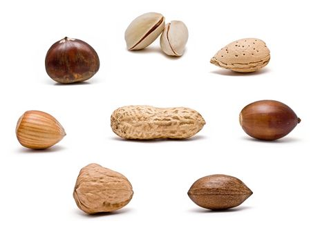 Nuts. photo