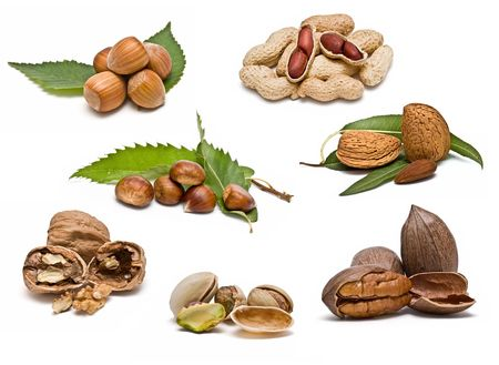 Collection of nuts. photo