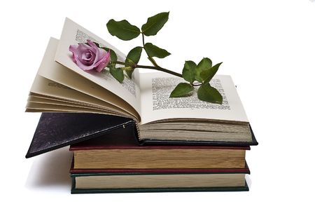 prose: A rose holding the page of a book.