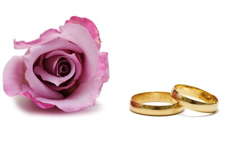 Wedding rings and a pink rose.