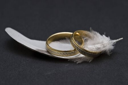 Feather and rings. Stock Photo - 6291867