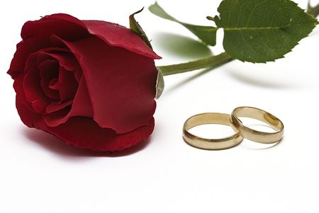 Wedding rings and red rose.