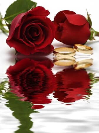 Reflected wedding rings and two roses. photo