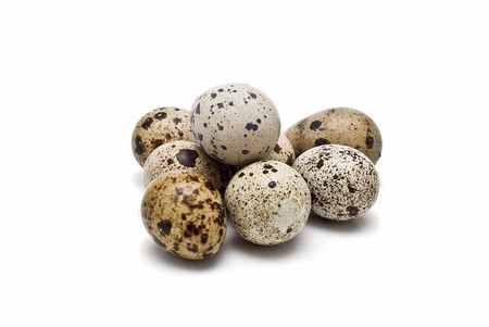 quail: Quail fresh eggs.