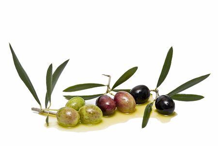 healthful: Aceitunas y aceite de oliva. Foto de archivo