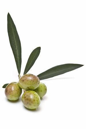 Green olives. Stock Photo - 6541049