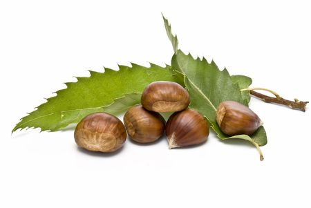 Chestnuts with leaves isolated on a white background.