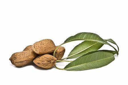 Almonds isolated on white background. photo