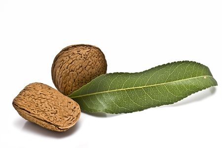 Almonds isolated on white background. photo