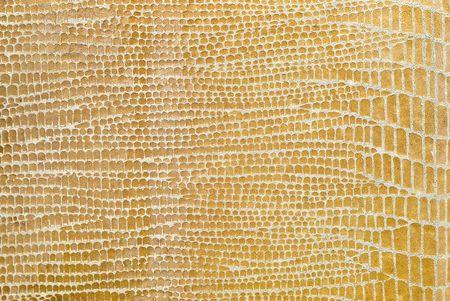Yellow reptile leather. Stock Photo - 6743014