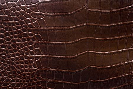 sheep skin: Reptile leather texture.