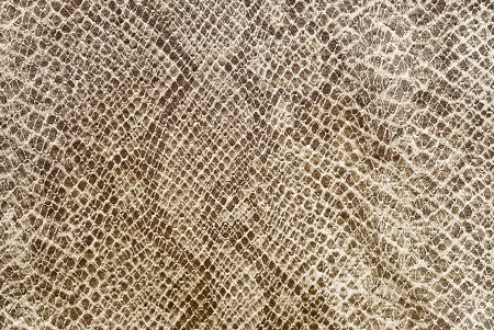 Reptile leather texture.