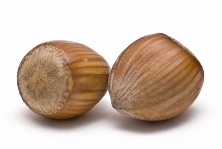 Hazelnuts isolated on a white background. photo