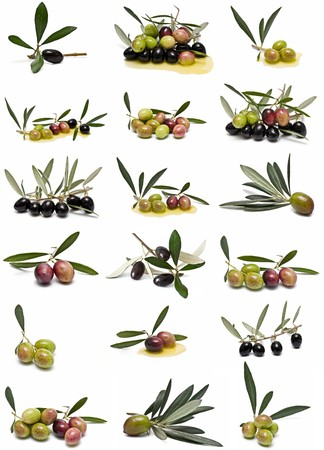 Olives collection isolated on white background. photo