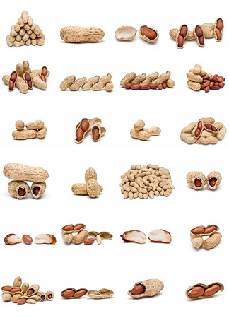 nut shell: Peanuts collection isolated on white background.