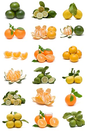 Citrus collection isolated on a white background.