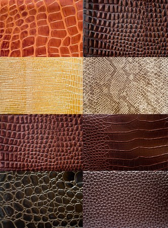 Reptile leather texture collection. Stock Photo - 7447106