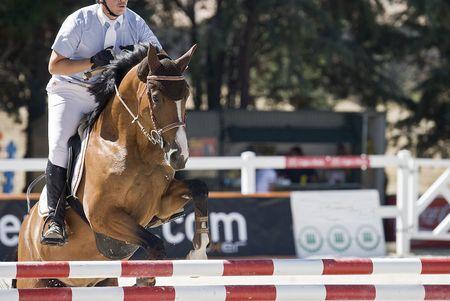 femme a cheval: �questre de saut. Banque d'images