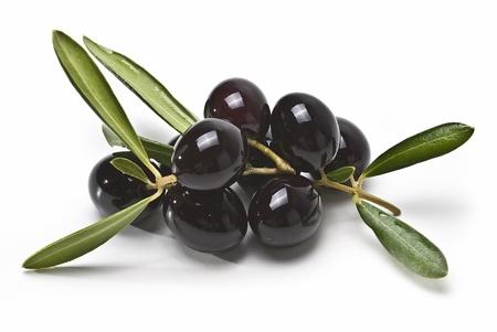 hoja de olivo: Aceitunas negras aisladas sobre un fondo blanco. Foto de archivo