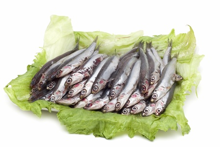 alimentation: Fres anchovies isolated on a white background.