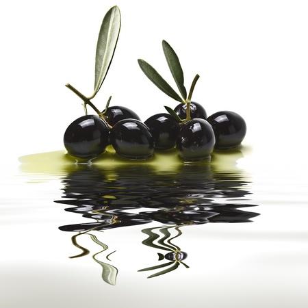 foglie ulivo: Alcune olive nere riflettono.