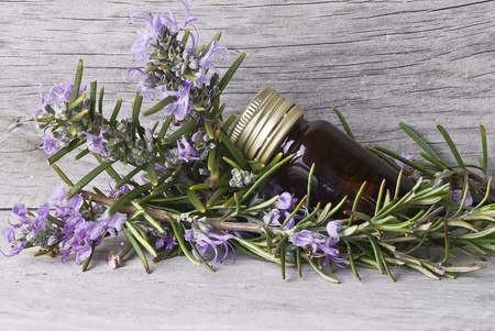 A few branches of fresh rosemary and essential rosemary oil. photo
