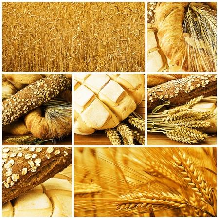 製パンや穀物の写真のコラージュ。