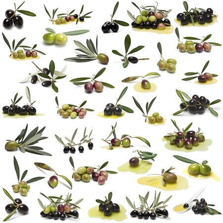 A large collection of photos of different varieties of olives isolated on white background. photo