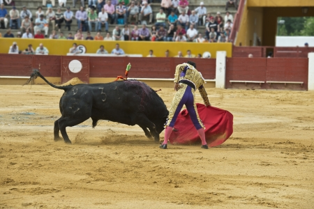 gaff: A matador fighting in a typical Spanish bullfight